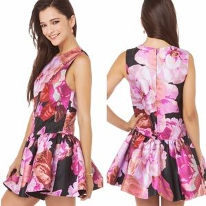 Cameo With Fire in Pink Posey Dress Romper